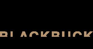 Blackbuck Marketing logo
